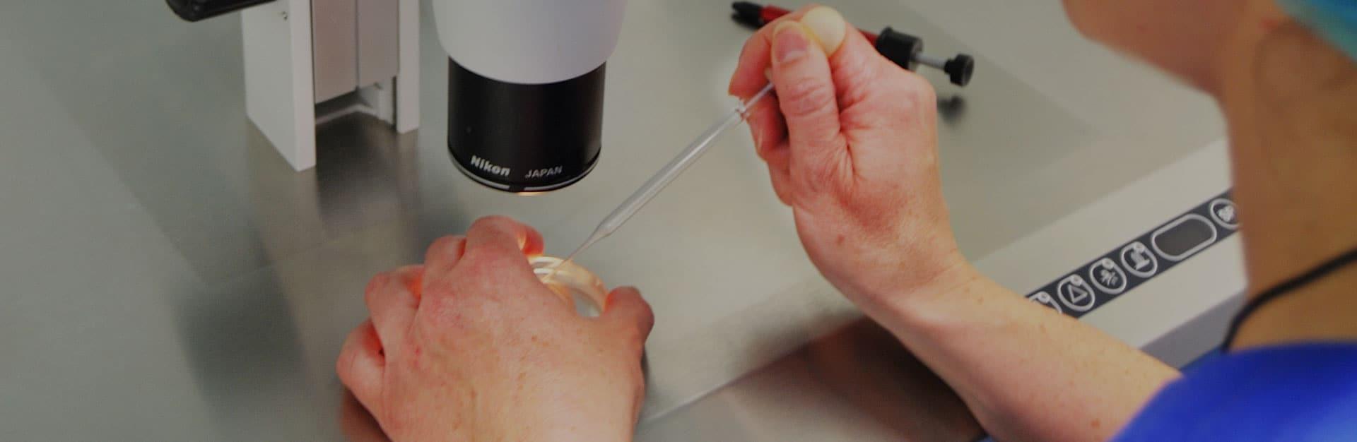 slider reproduccion asistida clínica ginecológica elcano7. Bilbao