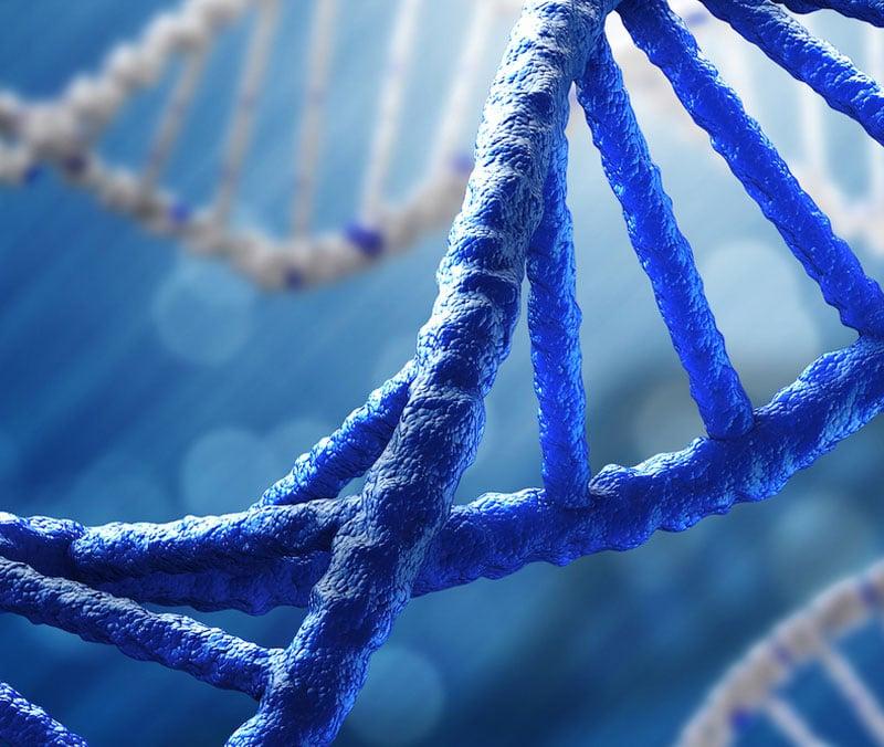 DNA fetal en sangre materna